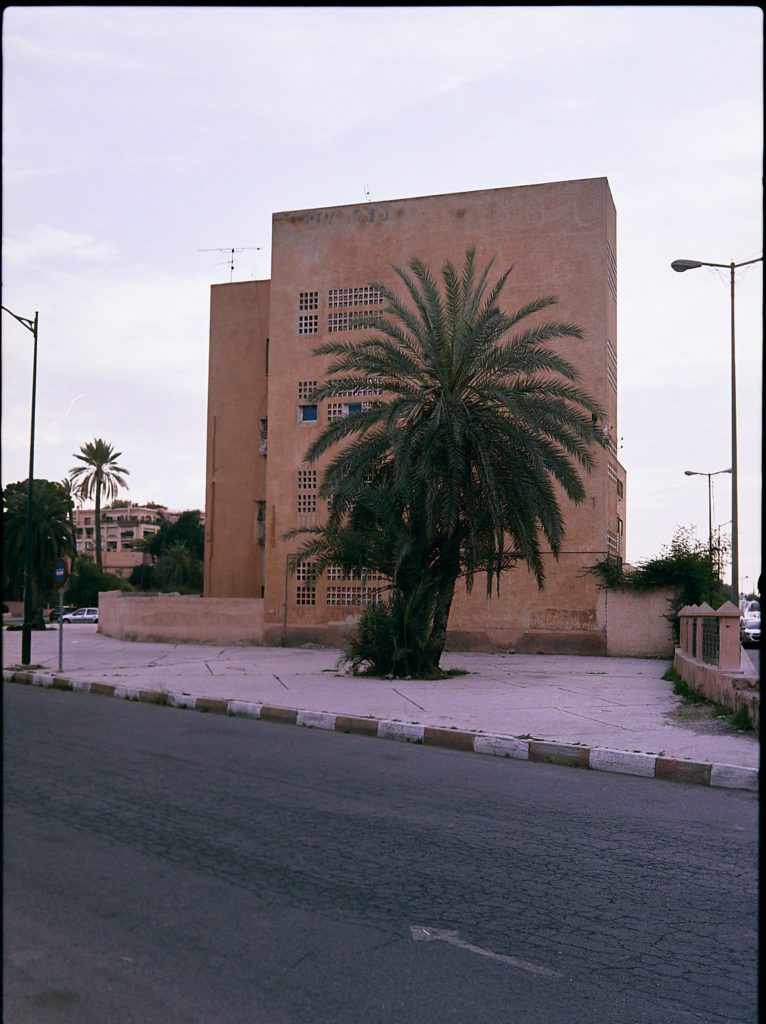Marrakech Gebäude Palme Marokko